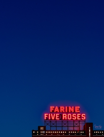 Fives Roses
